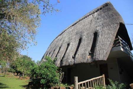 azambezi_river_lodge_RosaPfeffer-17